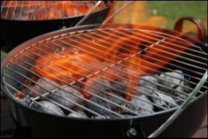 Sawdust Charcoal - the best choice for BBQ